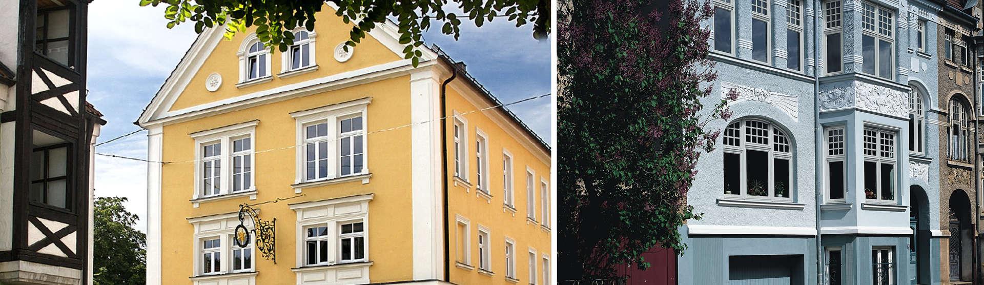 Denkmalschutzfenster_1